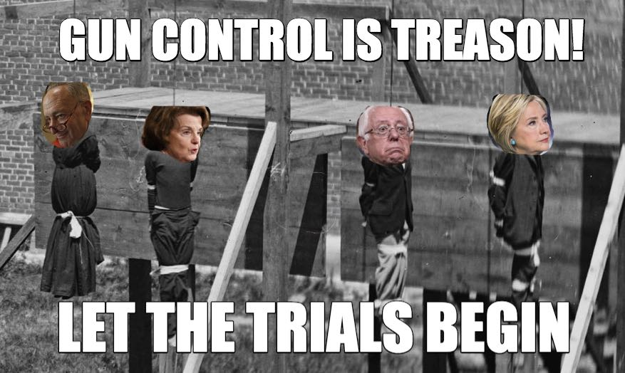 Gun Control Is Treason!